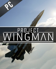 Project Wingman