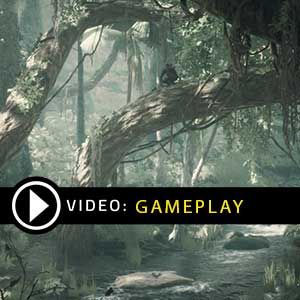 Ancestors The Humankind Odyssey Gameplay Video