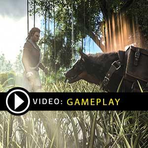 ARK Survival Evolved Nintendo Switch Gameplay Video