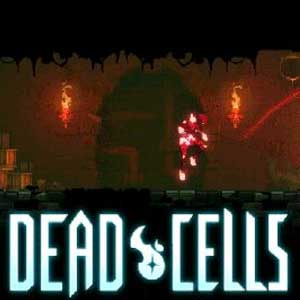 Koop Dead Cells CD Key Compare Prices