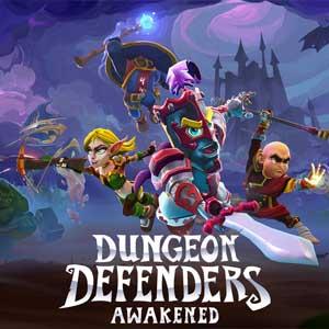Koop Dungeon Defenders Awakened CD Key Goedkoop Vergelijk de Prijzen