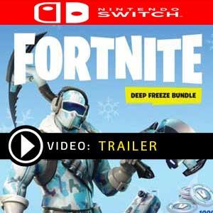 Koop Fortnite Deep Freeze Bundle Nintendo Switch Goedkope Prijsvergelijke