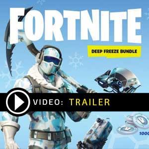 Koop Fortnite Deep Freeze Bundle Goedkoop Vergelijk de Prijzen