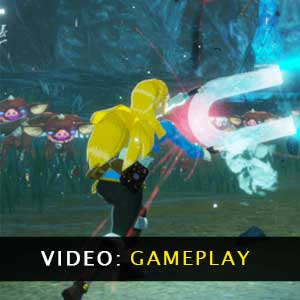 Hyrule Warriors Age of Calamity Video Gameplay