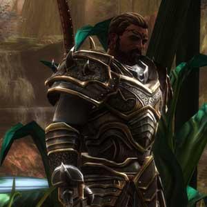 Kingdoms of Amalur Re-Reckoning geremasterde graphics