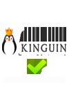 Kinguin coupon promo