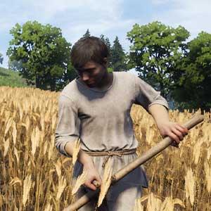 Medieval Dynasty Farming Crops
