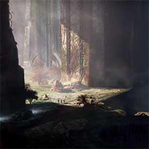 doorkruisende bossen