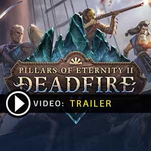 Koop Pillars of Eternity 2 Deadfire CD Key Goedkoop Vergelijk de Prijzen