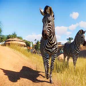 Planet Zoo Zebra