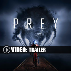 Koop Prey 2017 CD Key Compare Prices