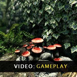 Skyrim Special Edition Gameplay Video