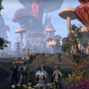 Sla Morrowind op