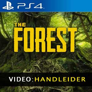 The Forest PS4 Video-opname