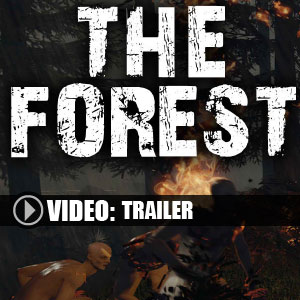 Koop The Forest CD Key Compare Prices