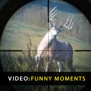 theHunter Call of the Wild Funny Moments